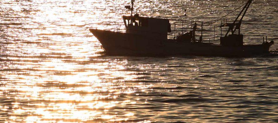Savjetovanje o državnim potporama i drugim novostima u zakonodavstvu za sektore gospodarskog ribolova na moru, marikulture i prerade