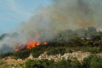 Vrućine su krenule, a s njima i požari: Gorjelo u Fenčevom polju