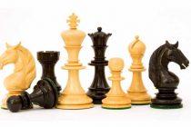 Na primoštenskom trgu Rudina odigrana je šahovska simultanka