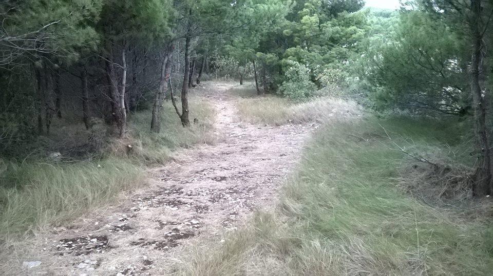 staza za biciklu