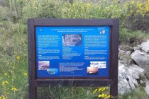 Ekološka udruga Primošten postavila poučnu stazu uz obalu poluotoka Kremik
