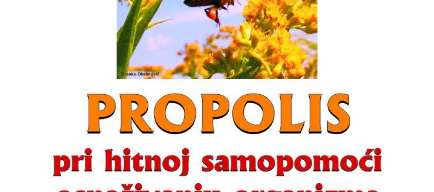 Predavanje o propolisu i njegovom utjecaju na organizam