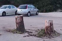 FOTO KRITIKA  – Krivo parkirana debla
