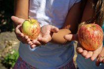OBAVIJEST RODITELJIMA-Osiguravanje školske prehrane za djecu u riziku od siromaštva šk. god. 2019.-2020.